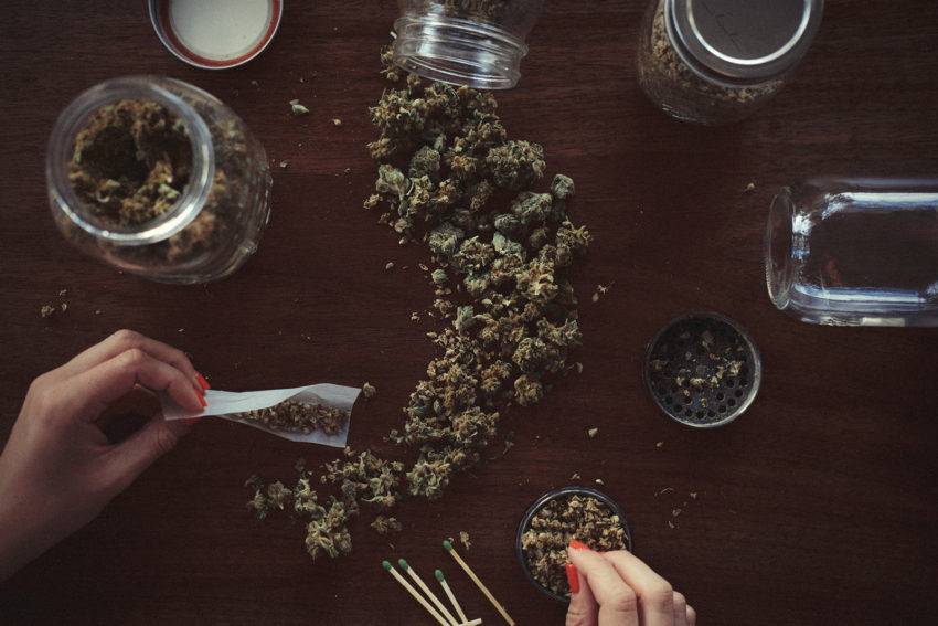 Cannabis covers the table while a woman rolls it into joints